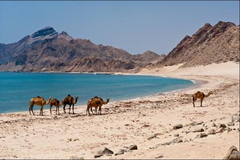 Dhofar East Beach